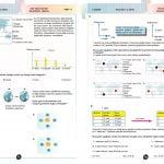 8. Sınıf Fen Bilimleri Full Soru Bankası 3